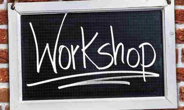Workshop medezeggenschap