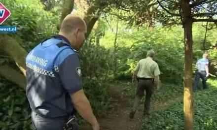 Extra handhavers in het Haagse Zuiderpark: 'In het park zijn rond de 25 illegale slaapplekken'