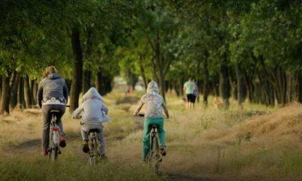 Jeugdbescherming: 'Te weinig crisisplekken in de zomer'