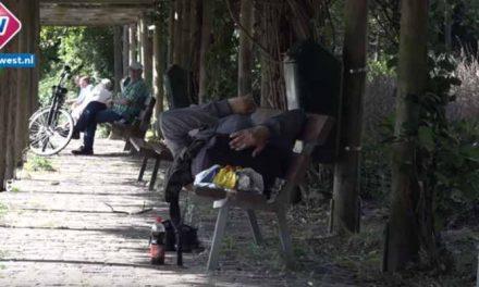 'Ze doen hun behoefte in de bosjes'; omwonenden zijn overlast daklozen in Haags park zat