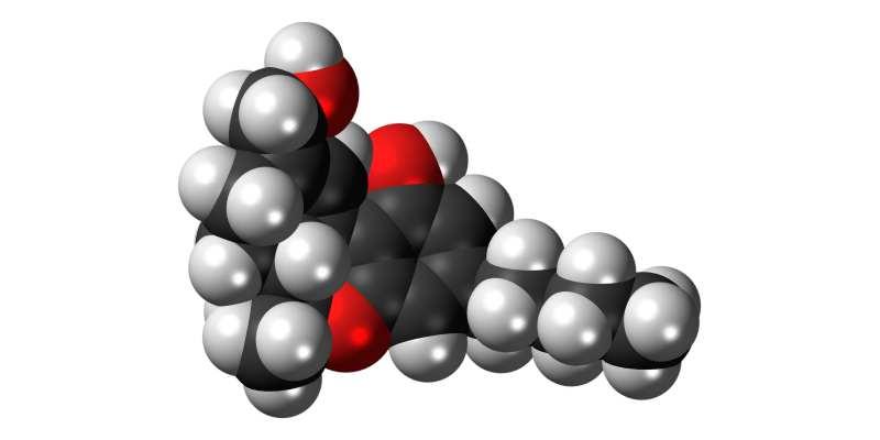 Minder psychoses door minder THC in cannabis