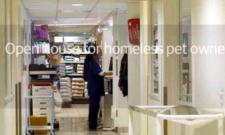 Gratis behandeldag voor dieren van eigenaren in financiële nood in het Dierenziekenhuis