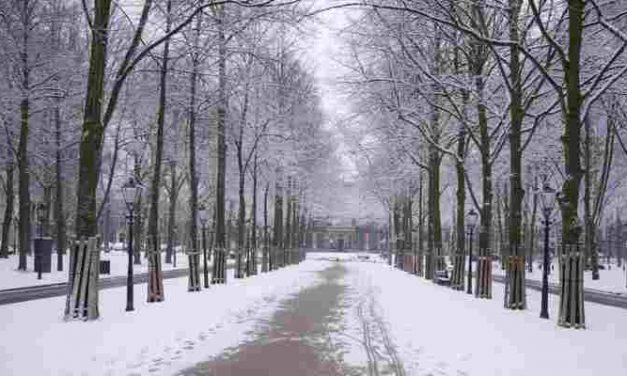 College zegt 32 extra winteropvangplekken toe