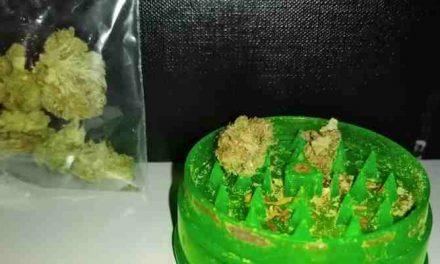 Nederlanders gebruiken steeds meer cannabis