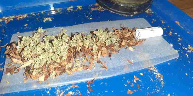 Trimbos-instituut: cannabisgebruikers blowen in coronatijd meer, uit verveling